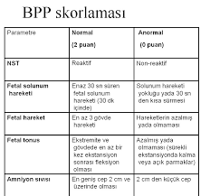 biyofizik profil skorlamasi